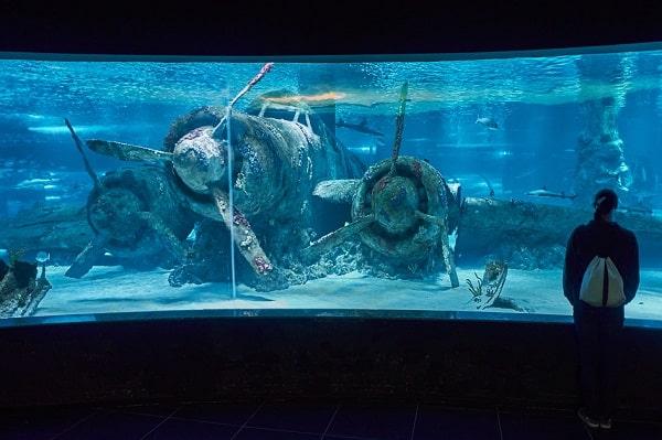 aquarium-antalya-uitjes-kinderen-bezienswaardigheden